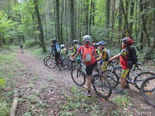 Mountain bike loop number 1 of Rothonne forest: the fox